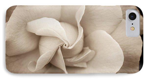 Pinwheel Rose IPhone Case by Cathy Donohoue