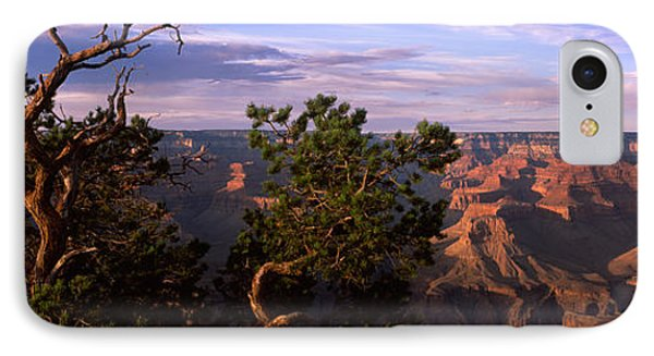 Pinyon Pine On Rim Trail, South Rim IPhone Case by Panoramic Images