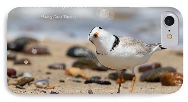 Piping Plover Quote IPhone Case by Bill Wakeley