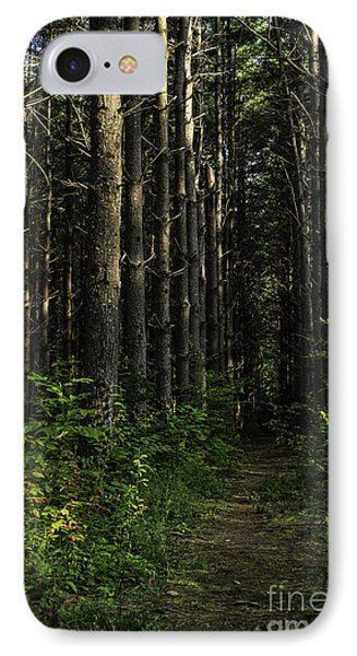 Pisgah Forest Trail Color IPhone Case