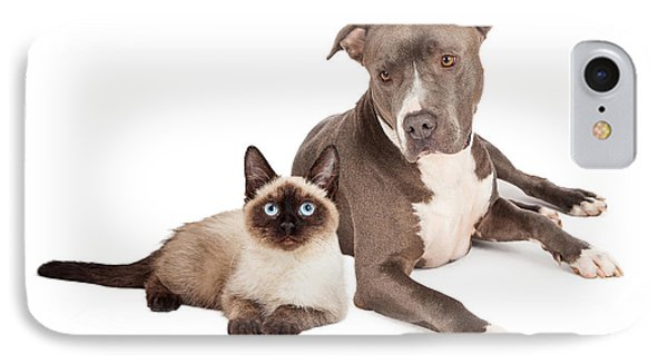 Pit Bull Dog And Siamese Cat IPhone Case by Susan Schmitz