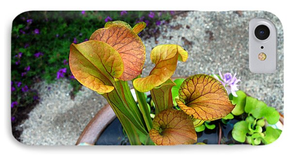 Pitcher Plants IPhone Case