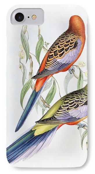 Parakeet iPhone 7 Case - Platycercus Adelaidae From The Birds Of Australia by John Gould