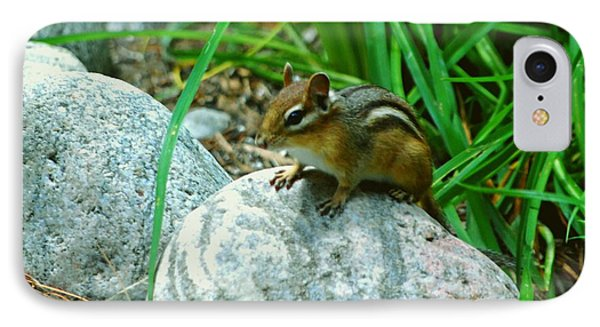 Playful Chipmunk IPhone Case