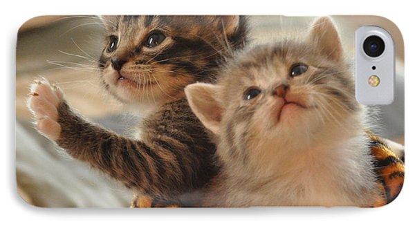 Playful Kittens IPhone Case by Debby Pueschel