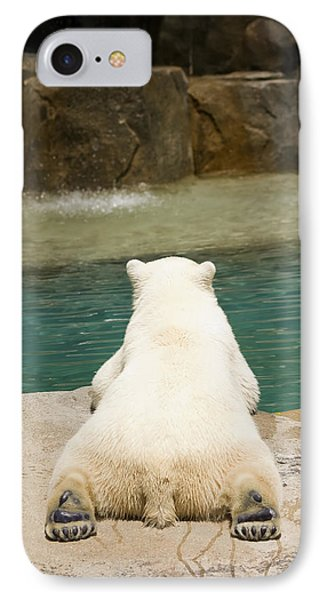 Playful Polar Bear IPhone Case by Adam Romanowicz