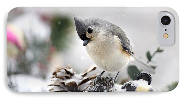 Playful Winter Titmouse IPhone Case by Christina Rollo