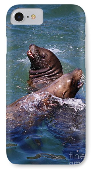 IPhone Case featuring the photograph Playing Pair Of Sea Lions by Debra Thompson