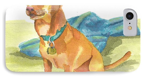 IPhone Case featuring the painting Playtime Please by Terry Taylor