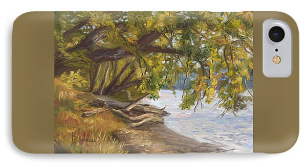 Plein Air - Chicopee River IPhone Case by Lucie Bilodeau