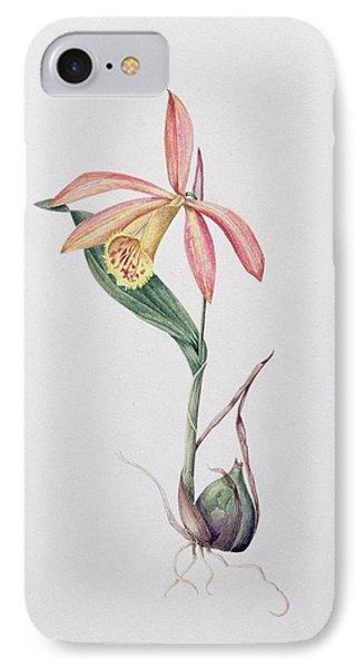 Pleione Zeus Wildstein IPhone Case by Mary Kenyon-Slaney