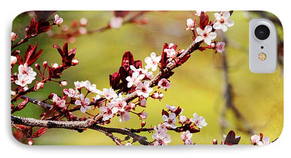 IPhone Case featuring the photograph Plum Blossoms by Trina  Ansel
