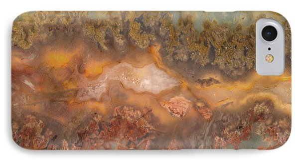Plume Agate IPhone Case by Leland D Howard