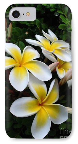 Plumeria In The Sunshine Phone Case by Kaye Menner