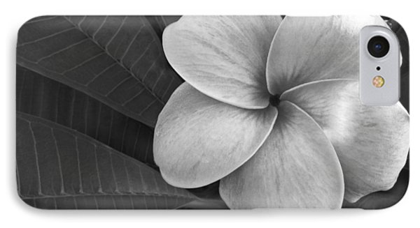 Plumeria With Raindrops IPhone Case by Shane Kelly