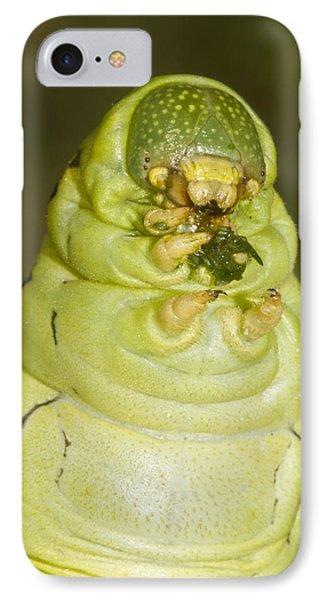 Plump Green Caterpillar IPhone Case