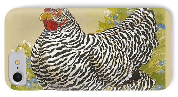 Plymouth Rock Hen 4 Phone Case by Tracie Thompson