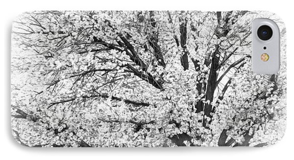 IPhone Case featuring the photograph Poetry Tree by Roselynne Broussard