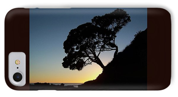 IPhone Case featuring the photograph Pohutukawa Trees At Sunrise by Peter Mooyman
