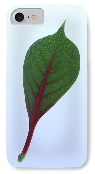 Poinsettia Leaf IPhone Case by Richard Stephen