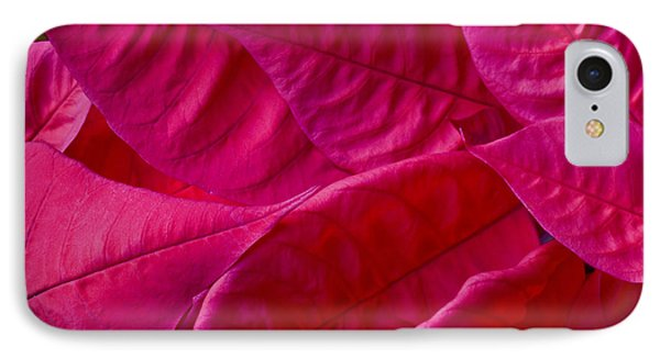 Poinsettia Leaves 1 Phone Case by Rich Franco