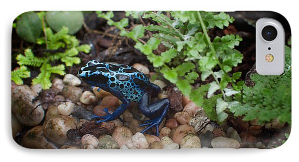 Poison Dart Frog IPhone Case by Carol Ailles