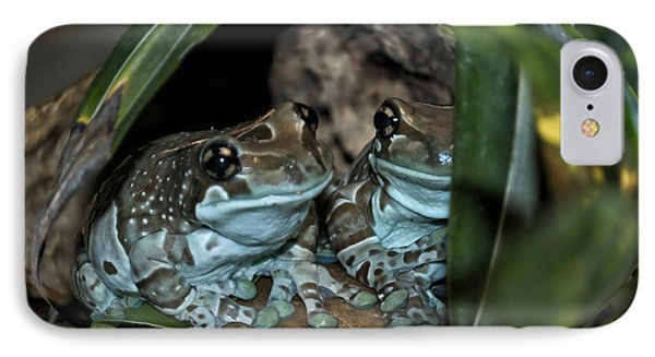 Poisonous Frogs With Sticky Feet Phone Case by Thomas Woolworth