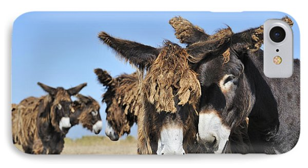 IPhone Case featuring the photograph Poitou Donkey 3 by Arterra Picture Library