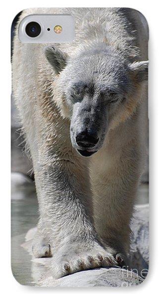 Polar Bear Balance IPhone Case by DejaVu Designs