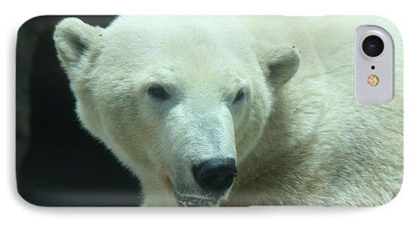 Polar Bear Head Shot Phone Case by John Telfer