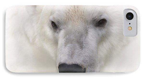 Polar Bear Portrait IPhone Case by Heiko Koehrer-Wagner