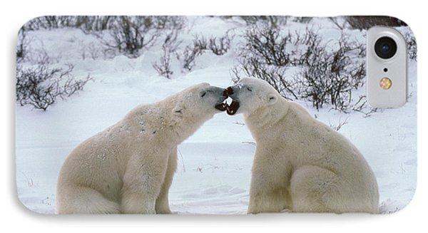 Polar Bears Sparring Phone Case by Francois Gohier