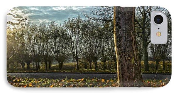 Pollard Willows In Rotterdam IPhone Case by Frans Blok