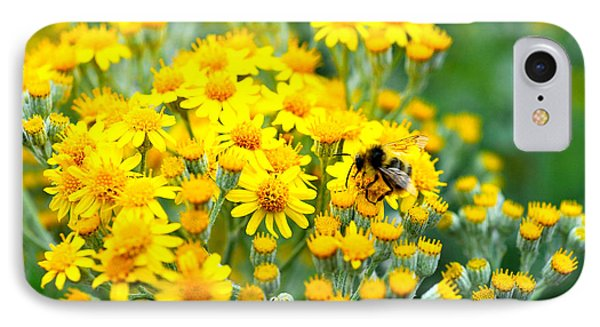 Pollination IPhone Case by Crystal Hoeveler