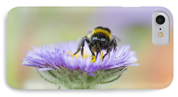 Pollinator  IPhone Case by Tim Gainey
