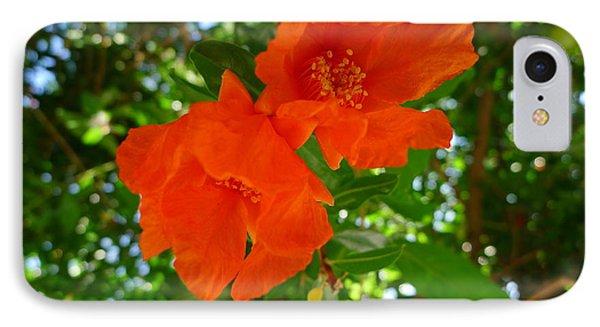 Pomegranate Blossom  IPhone Case by Nora Boghossian