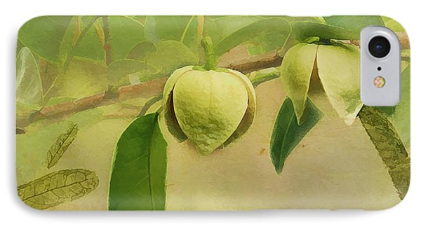 Pond Apple IPhone Case by Grace Dillon