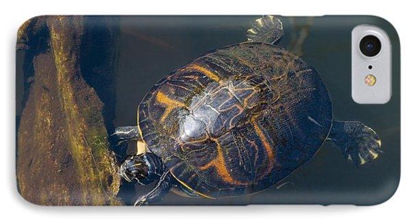 Pond Slider Turtle IPhone Case by Rudy Umans