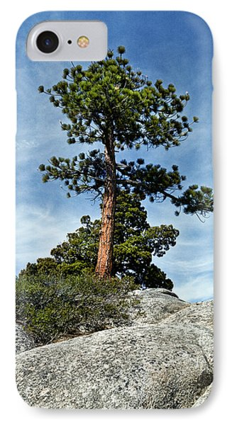 Ponderosa Pine And Granite Boulders IPhone Case