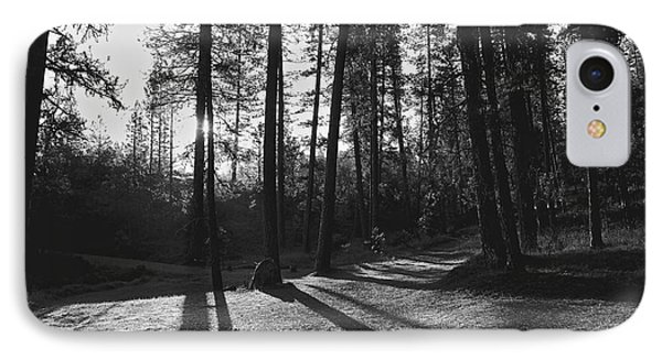 IPhone Case featuring the photograph Ponderosa Shadows by Lennie Green