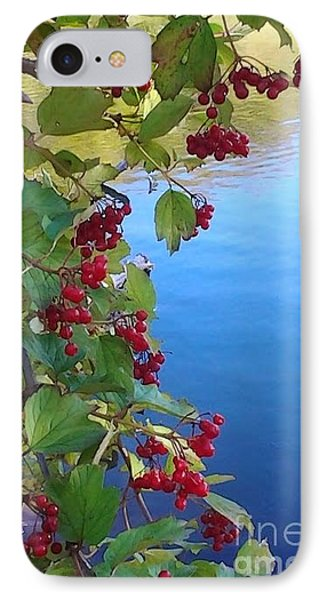 Pondview IPhone Case by Susan Townsend