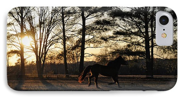 Pony's Evening Pasture Trot Phone Case by Paulette B Wright