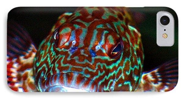 Poopaa Hawaiian Hawk Fish IPhone Case
