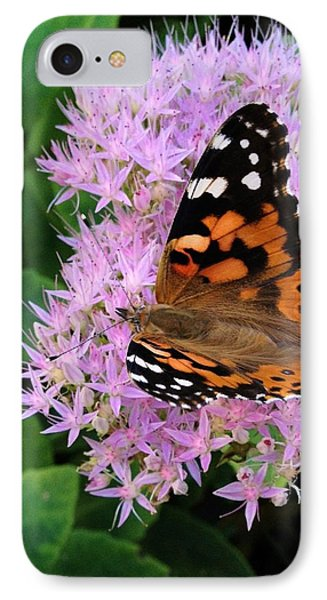Poor Butterfly IPhone Case