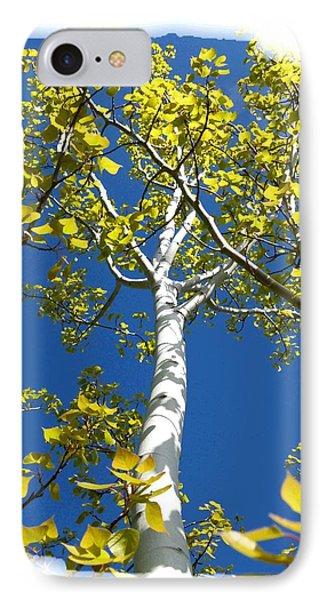 Poplar Tree In Spring  Phone Case by Will Borden