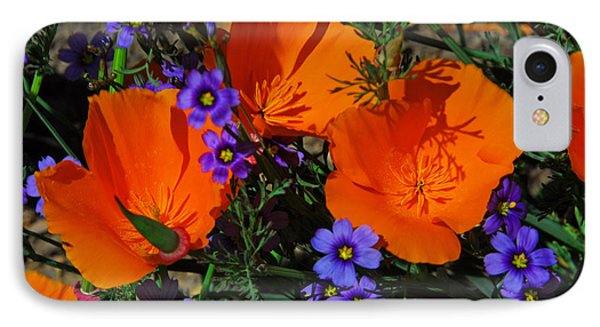 Poppies And Blue-eyed Grass - Fine Art By Lynn Bauer IPhone Case by Lynn Bauer