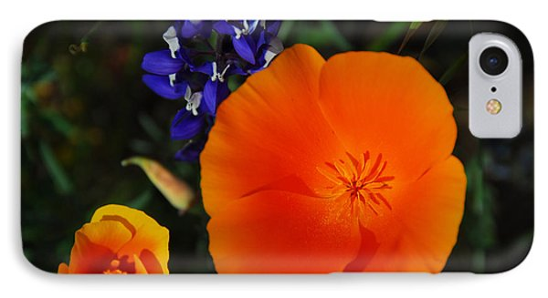Poppies And Lupine Phone Case by Lynn Bauer