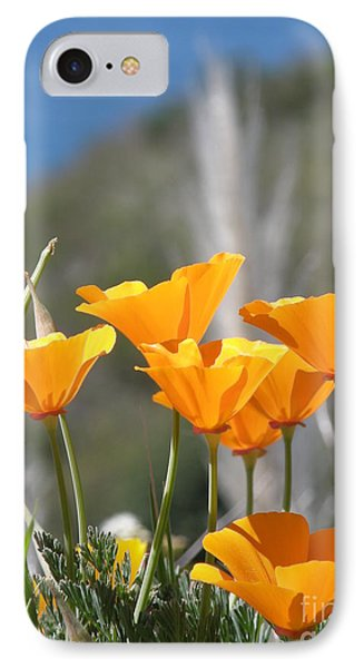 Poppies IPhone Case by Bev Conover