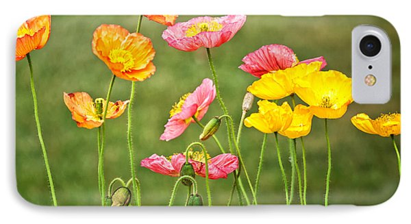 Poppies Blooming IPhone Case by Joan Herwig