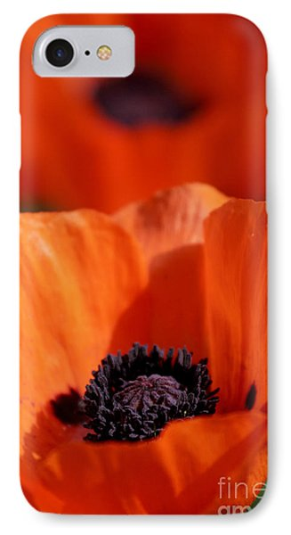 IPhone Case featuring the photograph Poppies In Sunlight by Lincoln Rogers